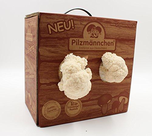 Pilzmännchen 4260209183034
