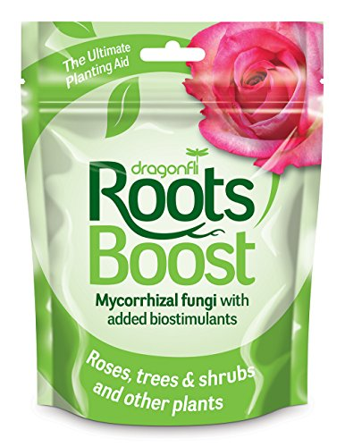 dragonfli-ps-01a-250g-roots-boost-brown-pack-of-1
