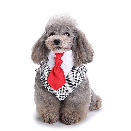Mit Kleidung Allen Weiße Kostüm - Amakunft Formale Hund Tuxedo, Hund Bandana Schal mit Hund Krawatte, Halsband Hund Kleidung Puppy Verkleiden Kleidung für Hochzeit Party Oder Halloween