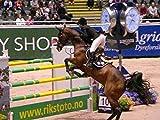 FEI Equestrian World