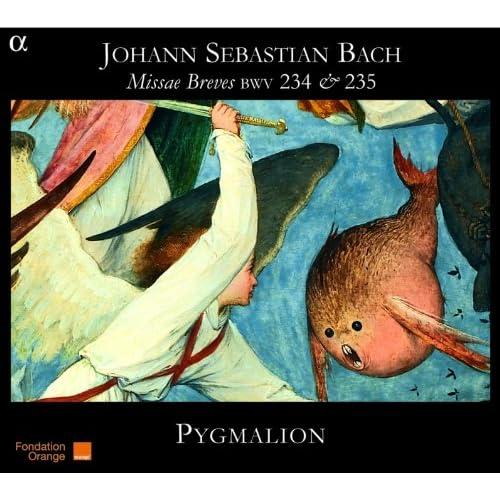 Bach: Missae Breves BWV 234 & 235