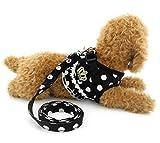 Ranphy Kleine Hunde Hundegeschirr mit Leine Polka Punkt Brustgeschirr Verstellbare Haustier Geschirr für Katze Schwarz Größe S