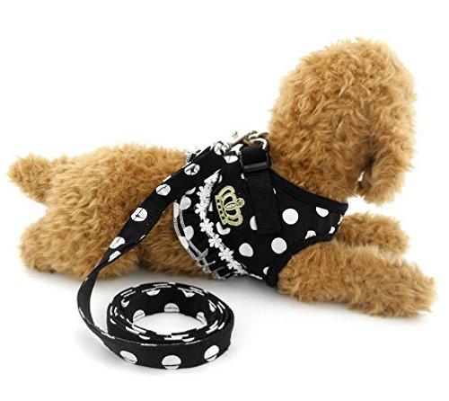Ranphy Kleine Hunde Hundegeschirr mit Leine Polka Punkt Brustgeschirr Verstellbare Haustier Geschirr für Katze Schwarz Größe L