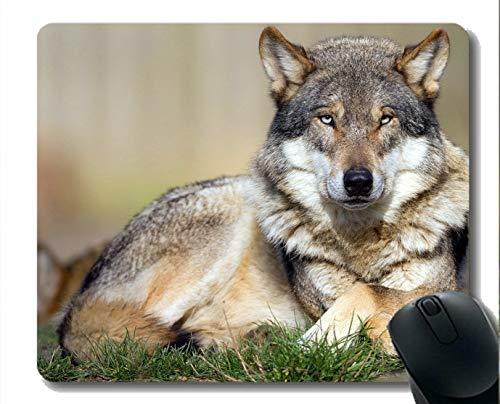 Gaming Mouse Mat, Animal Wolf Warrior Große Mauspad aus Gummi