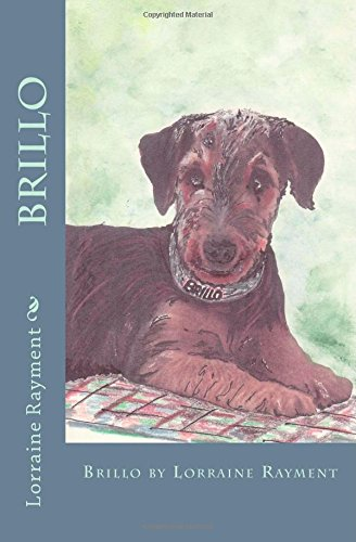 brillo-volume-2-dogpark