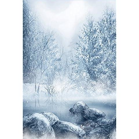 Invierno Nieve Scenic Photo Studio Telón de fondo blanco Frore de bosque de árboles Río gris piedra niños Navidad fotografía fondo digital cabina Studio 5X