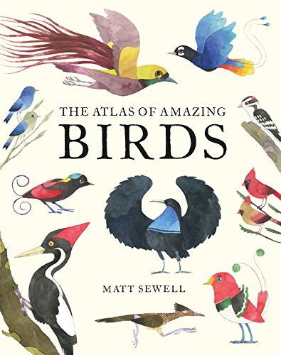 Matt Sewell's Atlas of Amazing Birds