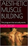 AESTHETIC MUSCLE BUILDING: The program that actually works