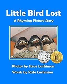 Little Bird Lost: A Rhyming Picture Story (English Edition) di [Larkinson, Steve, Larkinson, Kate]