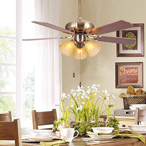 Hans Lighting Ceiling Fan with Light, 5 WoodBlade, 48 inch