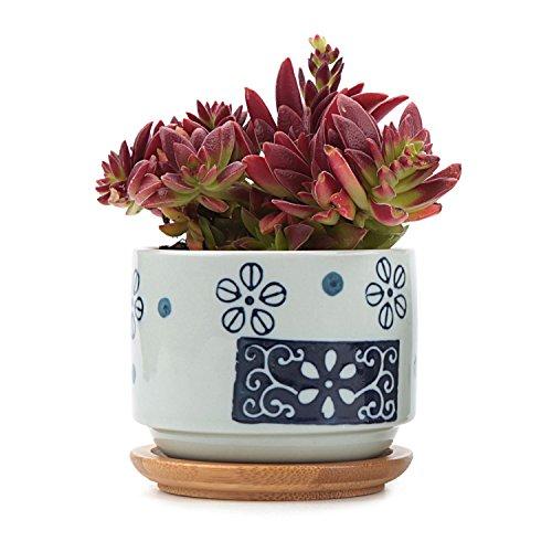 t4u-75-cm-ceramica-giapponese-seriale-sucuulent-vaso-per-piante-con-vaso-per-fiori-a-forma-di-cactus