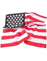 Dantiya fular de la bandera (EEUU)