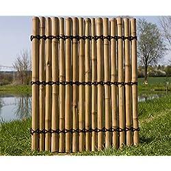 """Bambus Sichtschutzzaun""""Apas4"""" gelblich, 150 x 120cm von bambus-discount"""