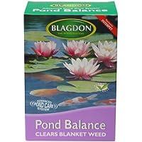 Interpet 2717 Blagdon Pond Balance - rimedio