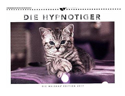 whiskas-katzenkalender-kalender-2017