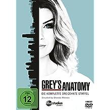 Grey's Anatomy: Die jungen Ärzte - Die komplette 13. Staffel