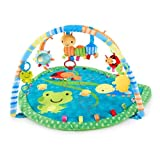Taggies Bug and Hugs Play Gym (Discontinued by Manufacturer) by Taggies
