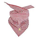 BONDI Karotuch ´EDELWEISS´ Tracht Baby Jungen Art. 90880 (karo rot/weiss)