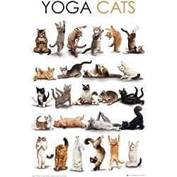 Póster Yoga Cats–Tamaño 61x 91,5cm–Maxipóster