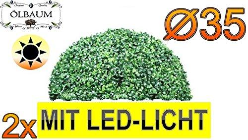 2X Buchsbaum mit LED-Lichtband große Buchsbaum-Halbkugel Durchmesser 35 cm 350 mm grün dunkelgrün