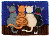 DIY Latch Hook Kit Rug Making Crafts for Kids/Adults 21 inch X 15 inch Cat285