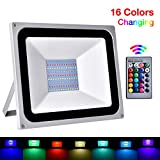 Faretto LED da Esterno RGB 100W 10000 lumen, Proiettore Faro LED da Esterno Impermeabile IP65, RGB Luce per Giardino, Corridoio, Casa, Illuminazione Interna ed Esterna