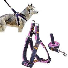 Cablaggio dell'animale domestico, Ambielly Jean cane conduce No-Pull guinzaglio del cane / gatto con fibbie a sgancio rapido di sicurezza del cane cablaggio Cowboy cinghia corda catena (Rosa, XL)