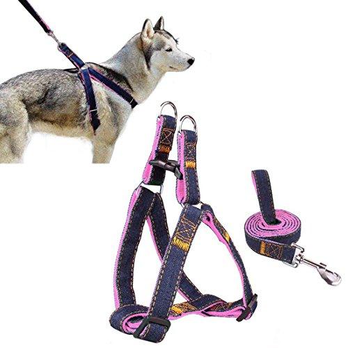 Cablaggio dell'animale domestico, Ambielly Jean cane conduce No-Pull guinzaglio del cane / gatto con fibbie a sgancio rapido di sicurezza del cane cablaggio Cowboy cinghia corda catena (Rosa, M)