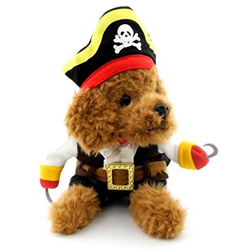Piraten Hund Hat - Pegasus Pet Katze Hund unter 20Pfund