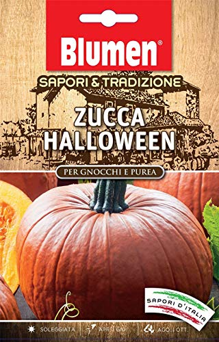 Portal Cool Geschmack & Tradition - Halloween-Kürbis