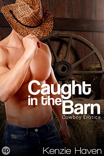 Caught in the Barn: Cowboy Erotica (Taken on the Ranch Book 1) (English Edition)