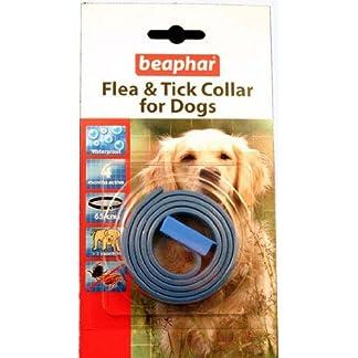 beaphar dog flea & tick collar Beaphar Dog Flea & Tick Collar 51Tj3 2BSvhlL