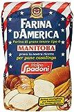 "Spadoni Farina""0"" Manitoba - 5 pezzi da 1 kg [5 kg]"