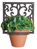 Questo supporto per vasi da parete starà bene ovunque. È realizzato in ferro battuto ed è un bel modo per mostrare le piante in spazi interni ed esterni. Il diametro del cerchio di supporto è di 13cm. *N.B.: vaso non incluso.