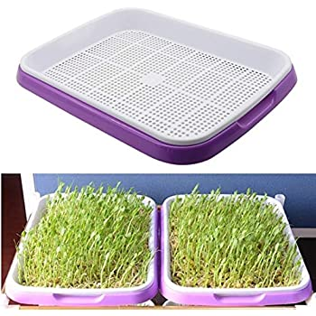 LVPY 2 Pcs Two-Tiered Hydroponics Basket Soilless Seed Sprouter Germination Tray Kit with Lid for Garden Home