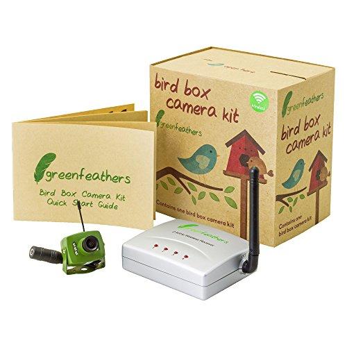 Spy Camera CCTV Green Feathers Caméra sans Fil Oiseau boîte avec Vision Nocturne, récepteur sans Fil, 700TVL vidéo et Audio, Plug UK