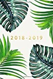 "2018-2019: Daily Monthly & Weekly Academic Student Planner | 2018-2019: Ferns, August 2018 - July 2019, 6"" x 9"" (Academic Student Planner with ... Women, Teenagers, Girls, Students & Teachers)"