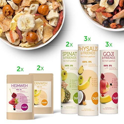 T-KORB | gefriergetrocknete Früchte & Superfoods für leckere Früchte-Smoothies und gesunde Snacks zwischendurch | 100% Frucht | 0% Zusätze | Healthy Snacks (Gesunde Halloween Snacks)