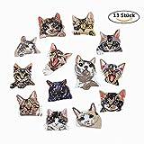 DoBestLJZ 13 Stück Katze Zum aufbügeln Patch Sticker Applikationen Zum Nähen Oder Aufbügeln, Niedlich DIY Kleidung Patches Aufkleber für T-Shirt Jeans Kleidung Taschen