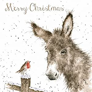 Wrendale Christmas Cards - Donkey & Robin Box Set: Amazon