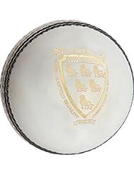 GRAY-NICOLLS–Escudo T20Cricket Deportes Grado 1cosido a máquina Match Ball, blanco, 5oz