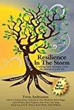 Resilience In The Storm: Coming Back Stronger From The Storms In Your Life (Warrior Series, Band 1)