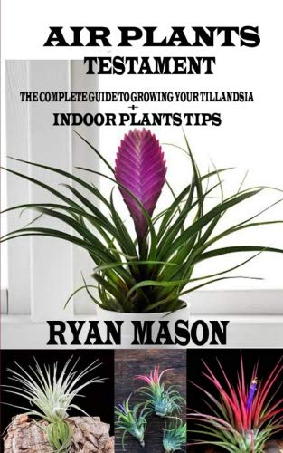 Air Plants Testament: The Complete Guide To Growing Your Tillandsia + Indoor Plants Tips por Ryan Mason