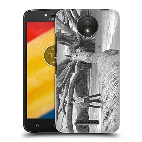 Offizielle Thomas Barbey Nussbaum Liebe Ruckseite Hülle für Motorola Moto C