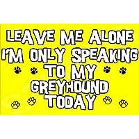 Déjame en paz sólo voy a hablar con mi perro de hoy - Jumbo imán regalo/regalo