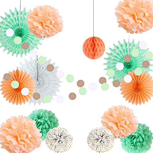 Easy Joy Dekoration Mint Hochzeit Dekor Set Apricot Pompoms Papier Rosetten (Mint Hochzeit Peach Und)