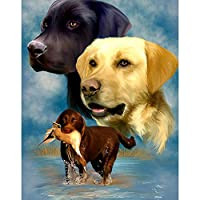Amyline Dog 5D Full Drill Diamond Painting Kit by Numbers Crystal Rhinestone Embroidery Cross Stitch DIY Art Craft Home Wall Decor