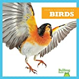 In Birds, early readers learn about the defining characteristics of this animal group. Vibrant, full-color photos and carefully leveled text will engage early readers as they discover what features set these animals apart.