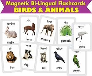 Buy Mfm Toys Birds Animals Bilingual Hindi English Magnetic