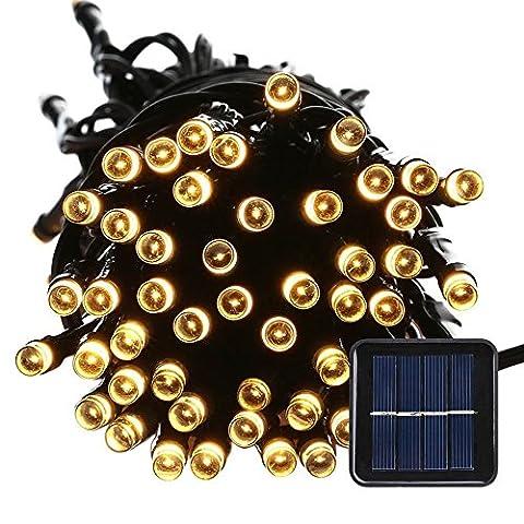 lederTEK Solar Powered Waterproof Fairy String Lights 100 LED 39ft 8 Modes Christmas Decorative Lamp (Bianca Leggiadramente Solare Luce)